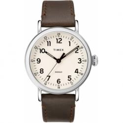 Мужские часы Timex STANDARD Tx2t20700